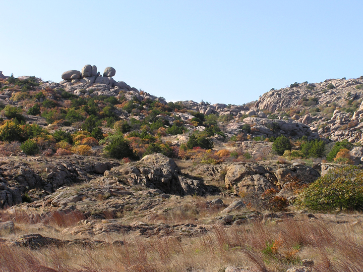 This hillside is a mixture of rock outcroppings and shrubbery transitioning to yellows and reds.